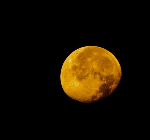 moon over evergreen